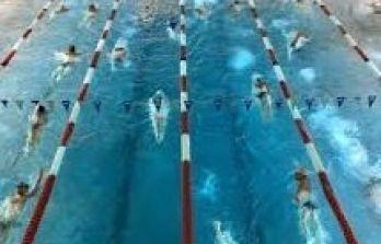 Schema training Masters zwemmen